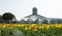 여미지식물원